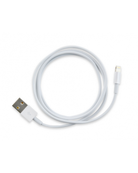 Apple iPad 4 Charging Connector